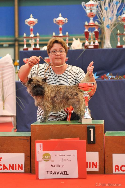 Héra-Girl de la Terrardière : Meilleur chien en classe travail de la Nationale d'Elevage