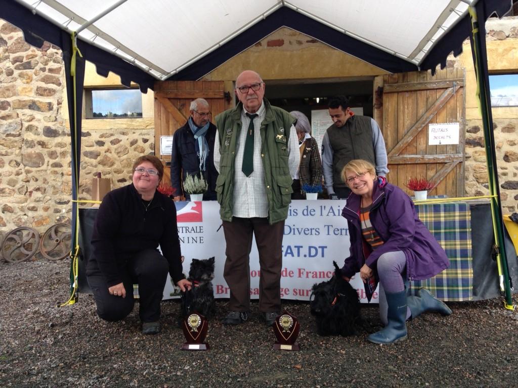 Ilou et Heamy, les 2 finalistes du Club des Amateurs de Terriers d'Ecosse
